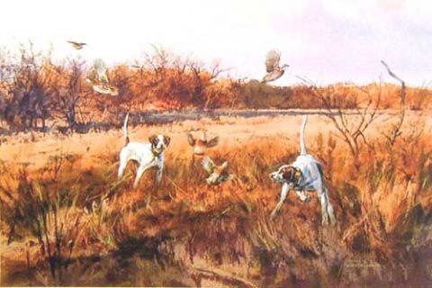 Quail Dogs