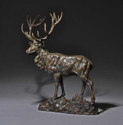 ciervo-red-stag-ed-30-5600-22-5-l-10w-26h
