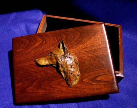 box-fox