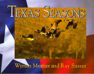 texas seasons