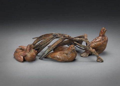 three bobwhite quail with pine