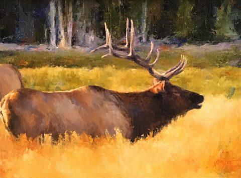 Julie Oriet- Elk