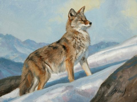 Edward Aldrich-Ascent