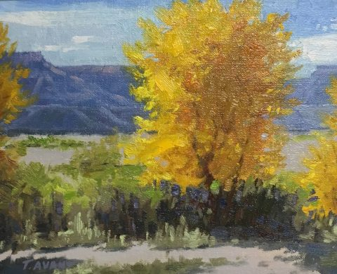 Tracy Avant-Freemont Valley, Utah- 8 x 10- Oil