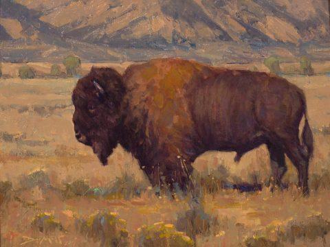John Demott-Antelope Flats Bison-Oil-9 x 12-2800